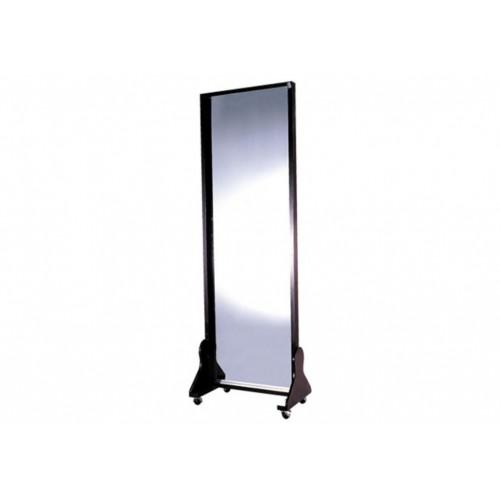 YH235 移動式糾姿鏡